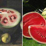 Ces aliments avaient l'air très différents à l'origine