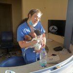 Beyrouth : une infirmière sauve trois bébés et émeut la Toile