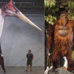 Les 10 plus gros animaux préhistoriques ayant vécu sur Terre