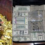 Des trésors découverts par hasard qui ont rendu des personnes riches