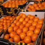 Des voyageurs chinois mangent 30 kilos d'oranges en 30 min pour ne pas payer l'excédent de bagages
