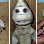 Un bébé requin mutant est né avec une tête humaine en Indonésie