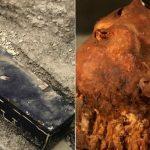 Les 10 découvertes archéologiques les plus étonnantes