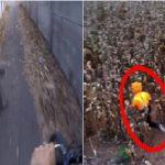 Les choses les plus effrayantes filmées par des GoPro